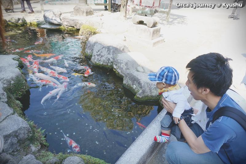 กินปลาได้มั้ยค้าบ