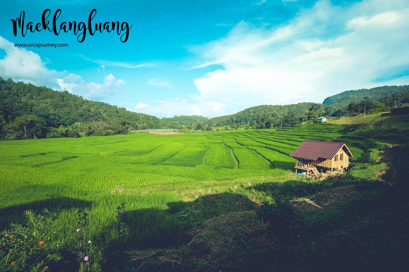 maeklang_016