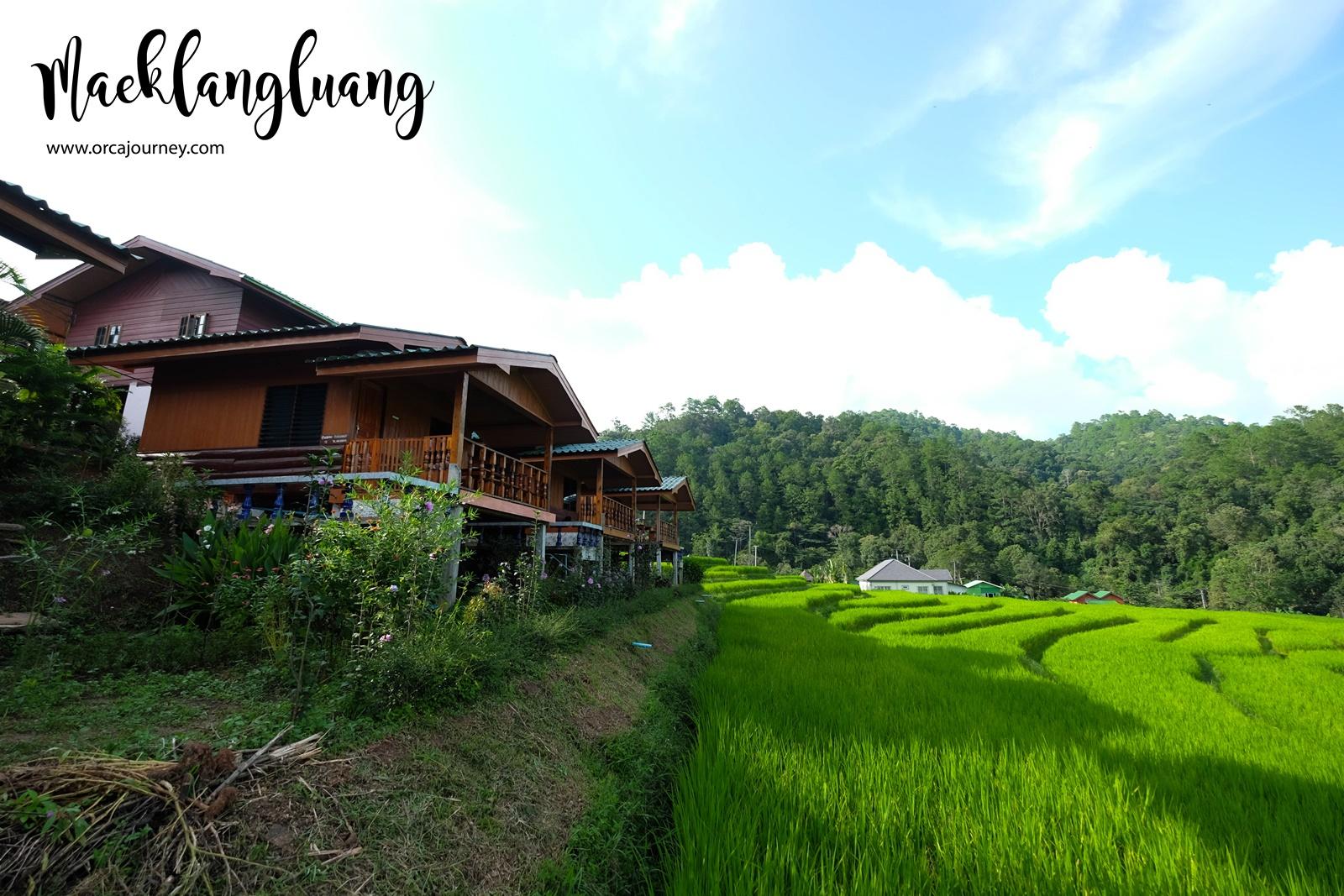 maeklang_017