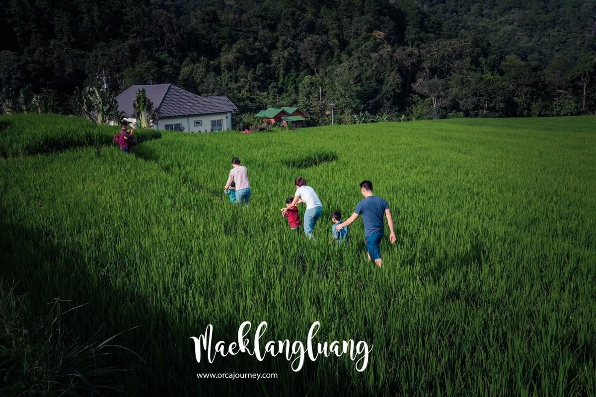 maeklang_020