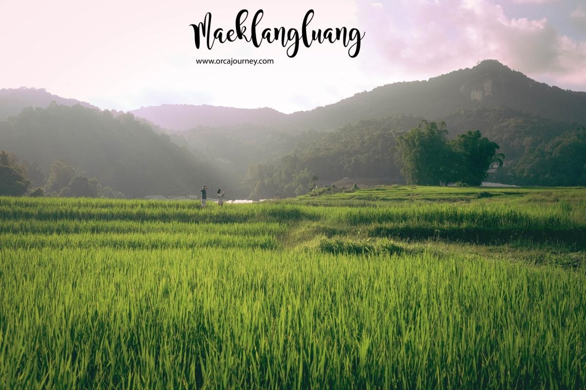 maeklang_031