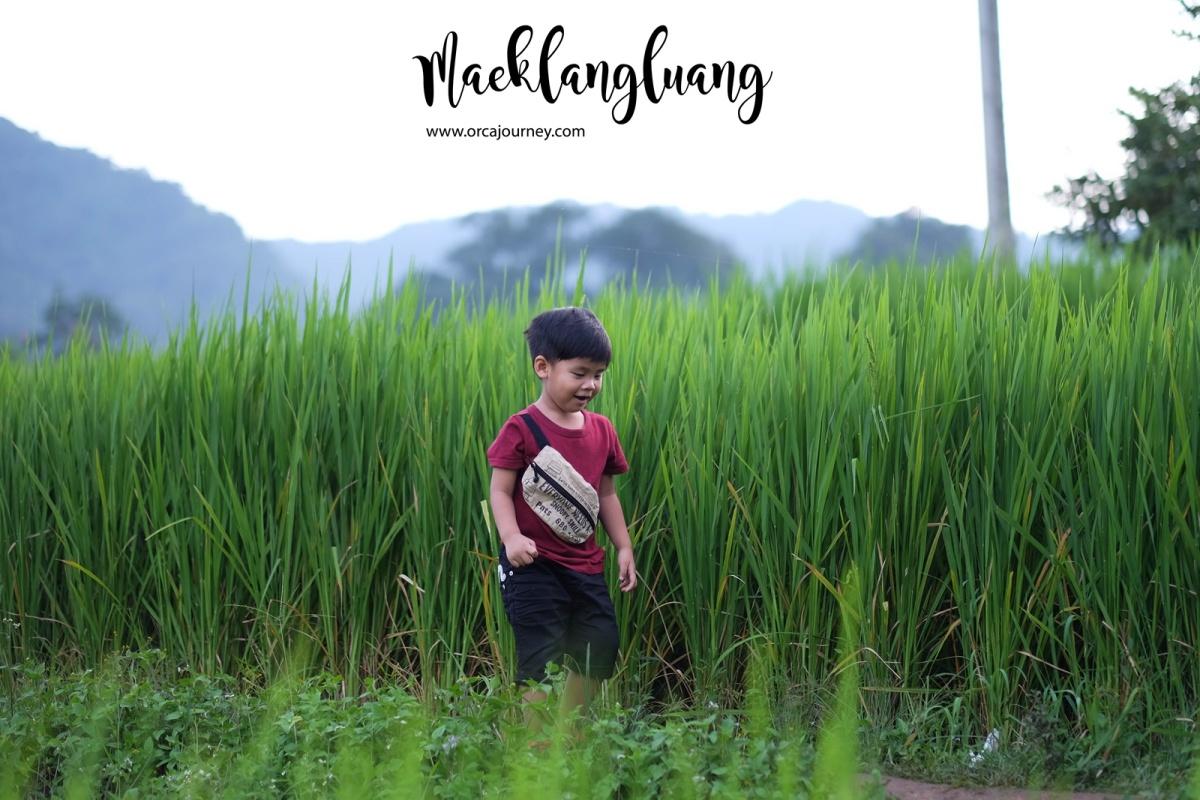maeklang_037