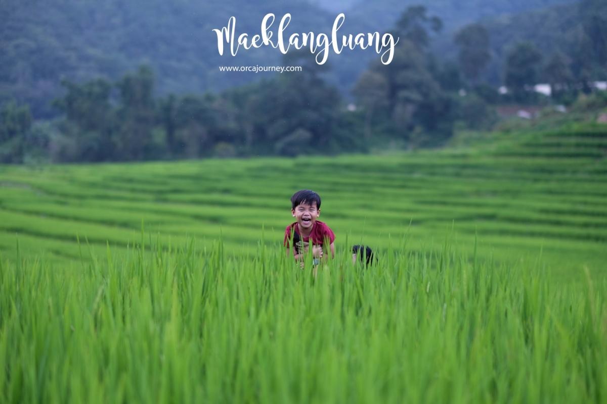 maeklang_049