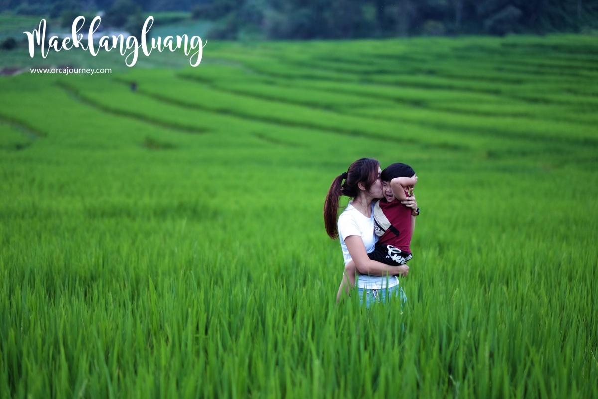 maeklang_052