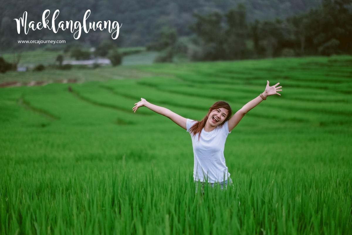 maeklang_054