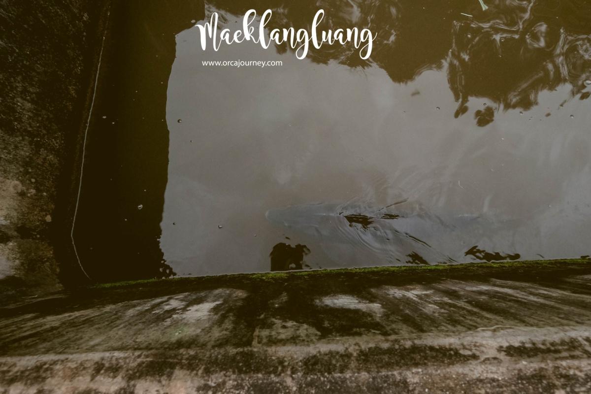 maeklang_058