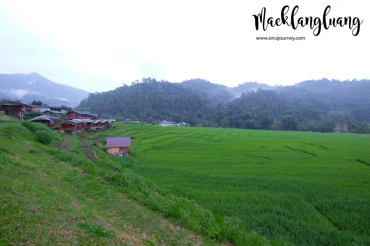 maeklang_059