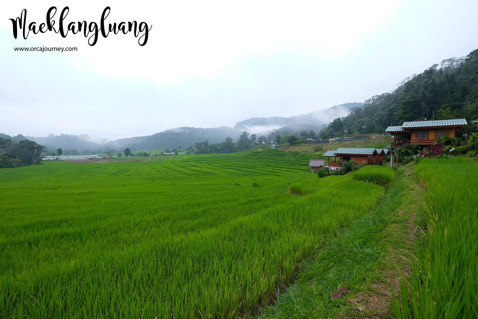 maeklang_065