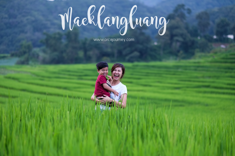 maeklang_cover_blog